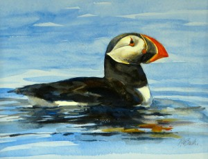"Puffin. 10"" x 13"", Watercolor, $1200."